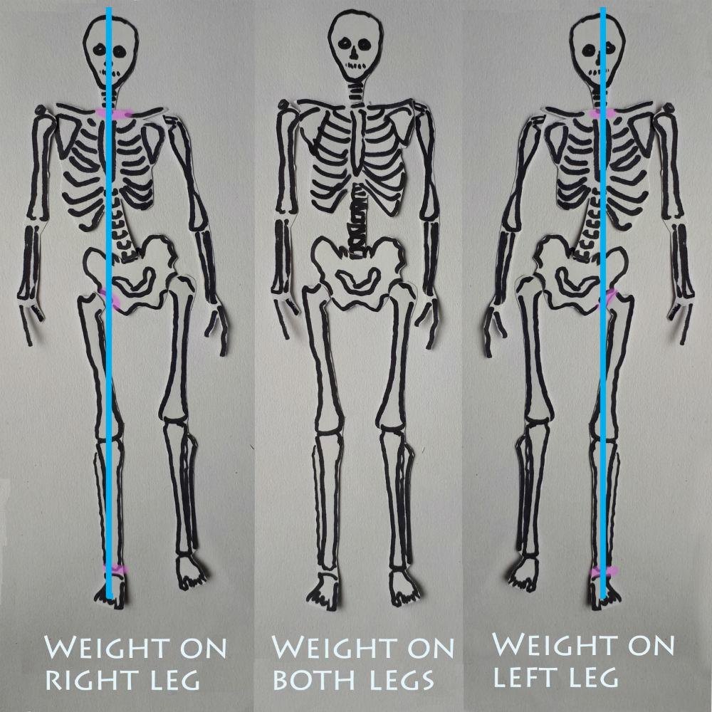 skeleton shifting weight and using sidebending