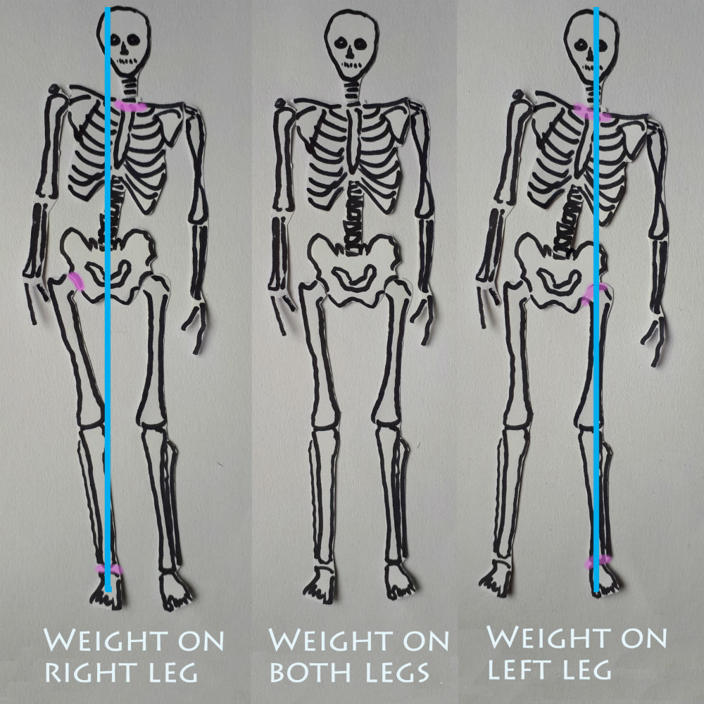 skeleton shifting weight from one foot to the other and throwing the hip out